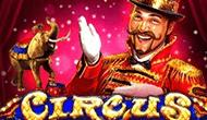 Игровой автомат Circus: искрометное представление в казино Вулкан