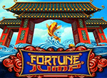 Fortune Jump в онлайн казино Вулкан